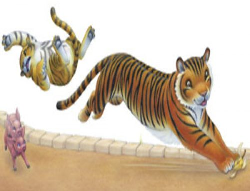 Tiger Slips on Banana Peel in Zoo Race